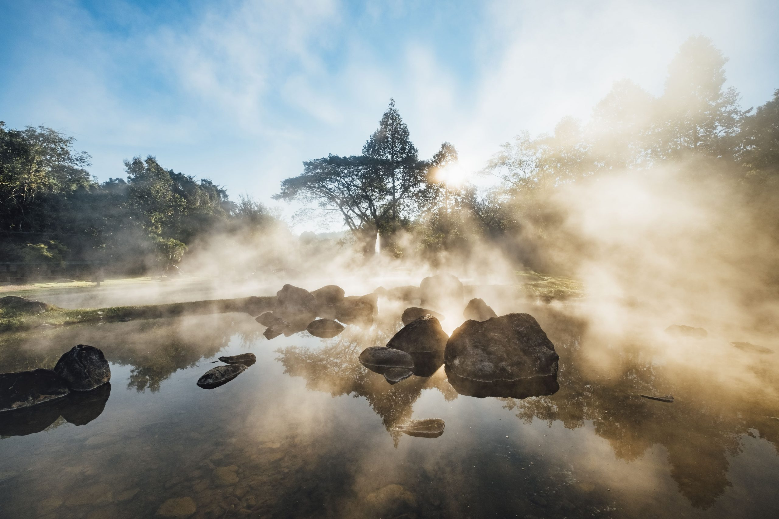 Borneo Nature Foundation: Protecting Borneo's biodiversity