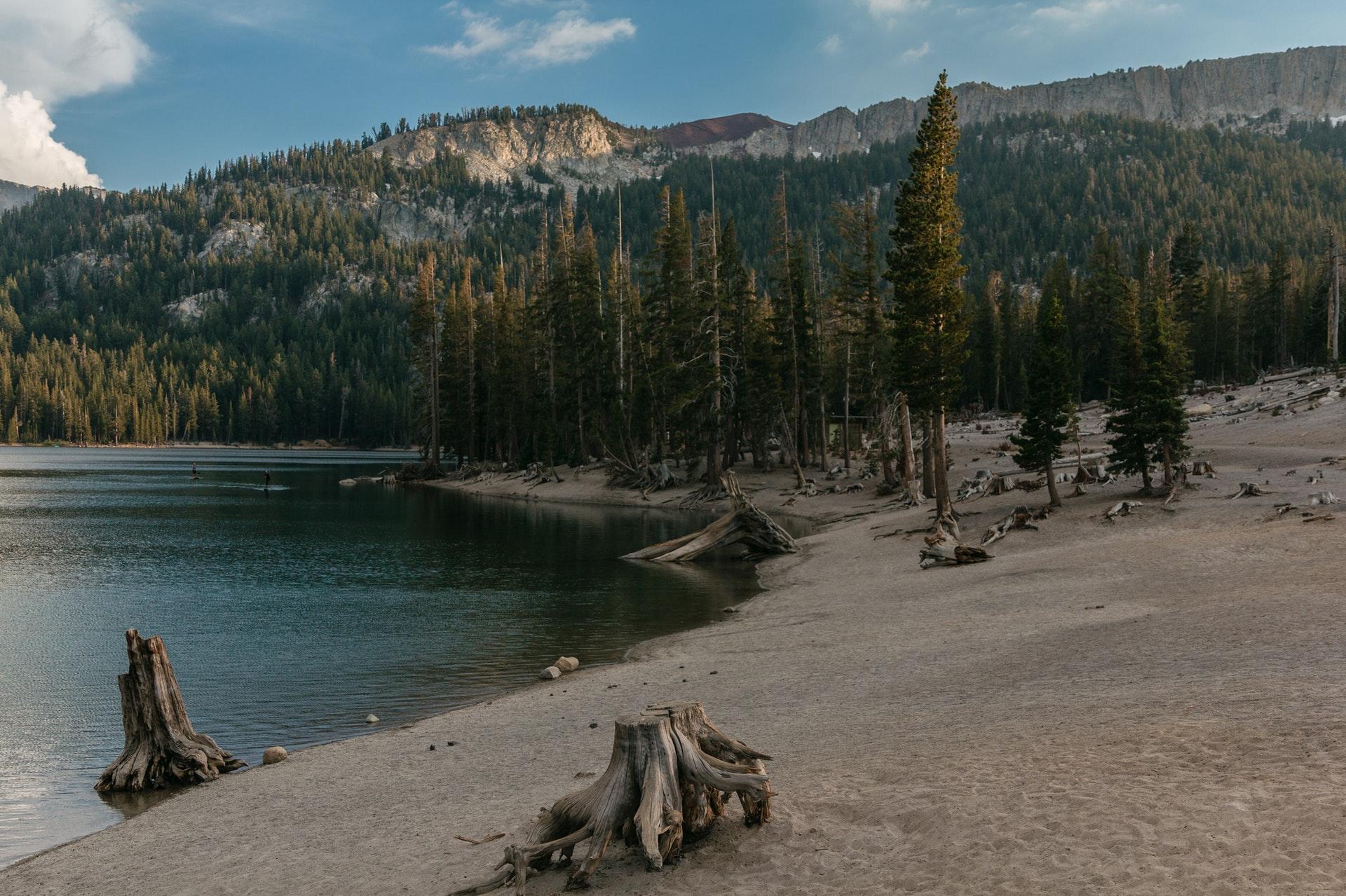 Environment Now California Program